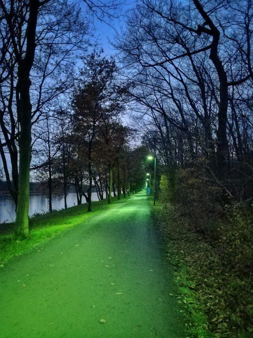 Das Bild zeigt einen grün beleuchteten Weg