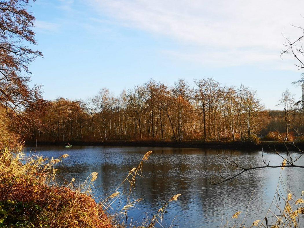 Das Bild zeigt einen See