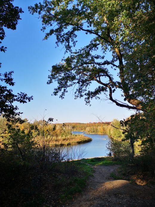 Das Bild zeigt den Ausblick auf einen See