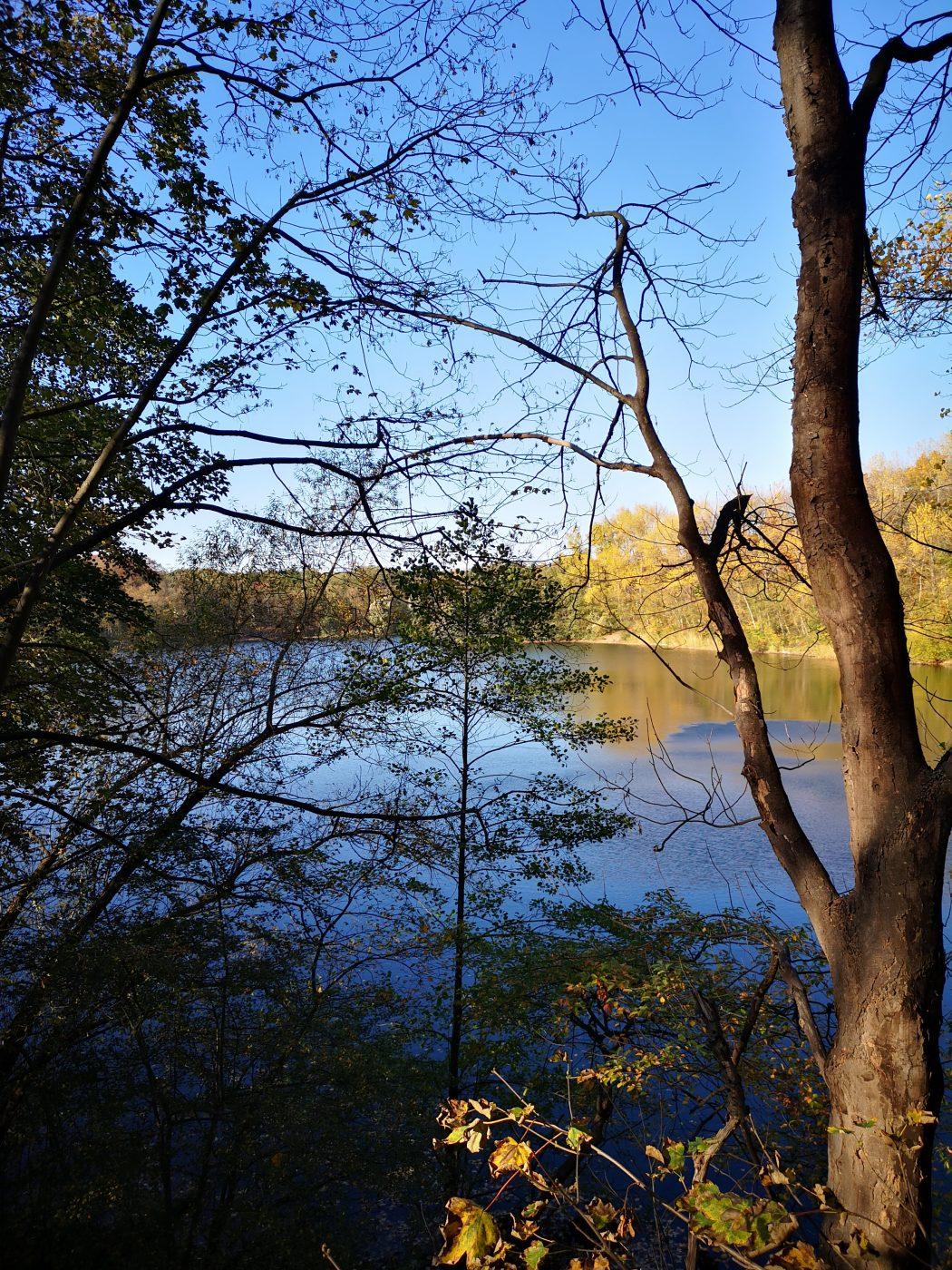 Das Bild zeigt den Blick auf einen See