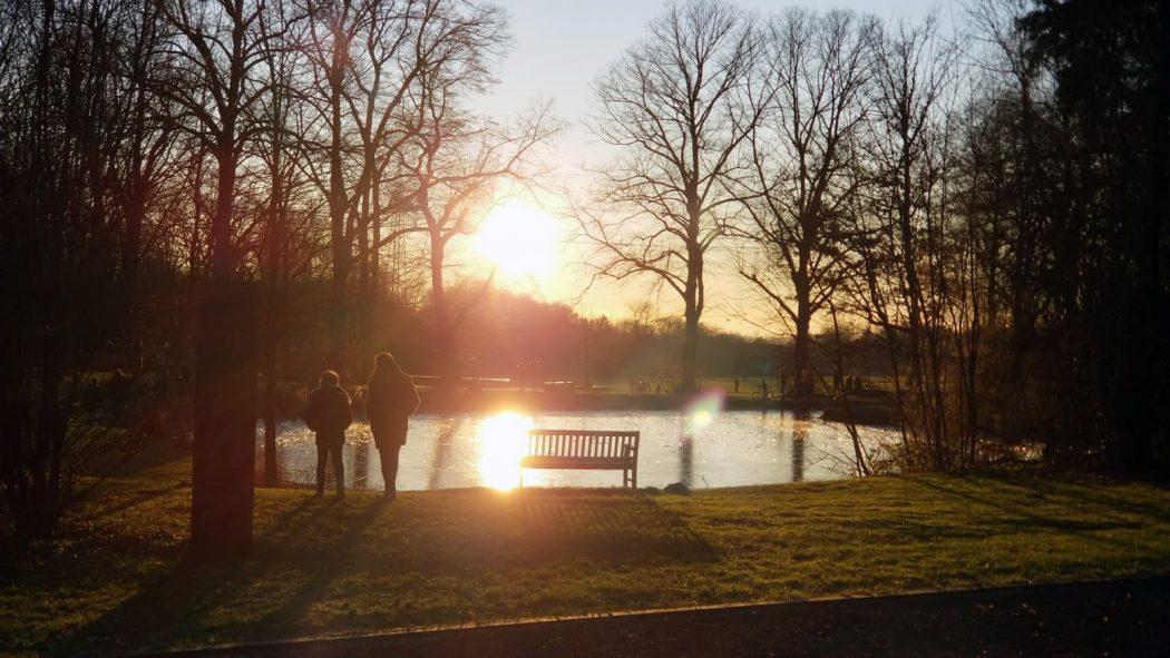 Das Bild zeigt eine Bank an einem See vor tiefstehender Sonne