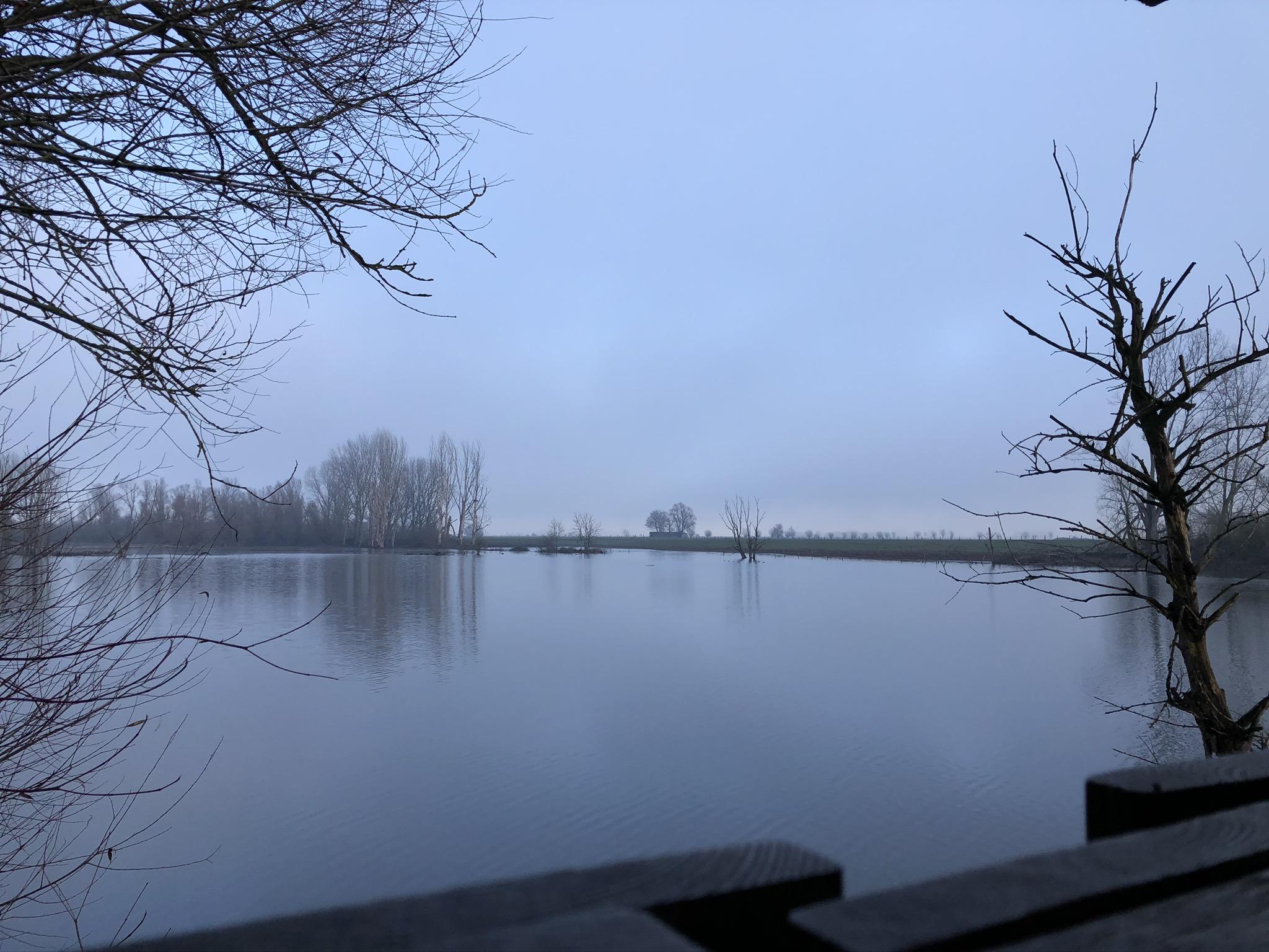 Blick auf die Auenlandschaft der Bislicher Insel in Xanten im Ruhrgebiet
