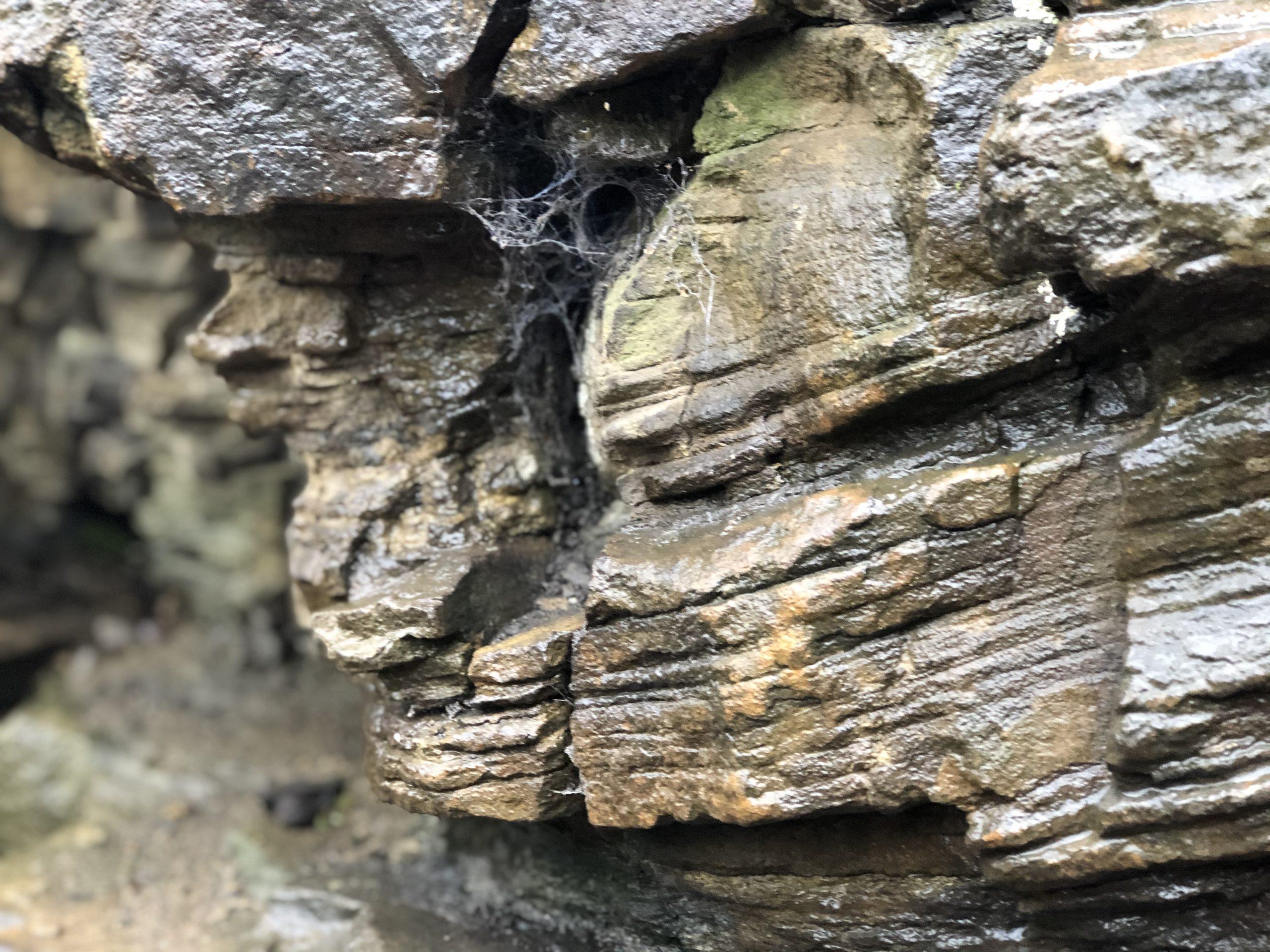 Gesteinsschichten auf dem Bergbauwanderweg Muttental in Witten im Ruhrgebiet