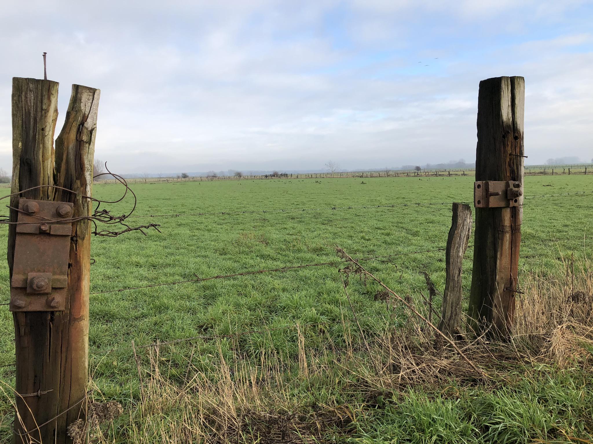 Felder auf der Bislicher Insel in Xanten im Ruhrgebiet
