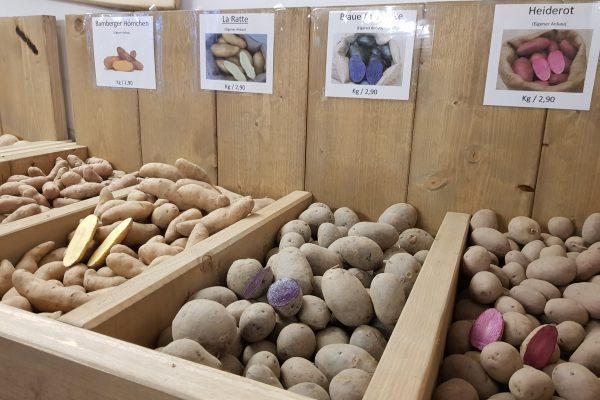 Das Foto zeigt Kartoffeln im Schwafheimer Hofladen in Moers