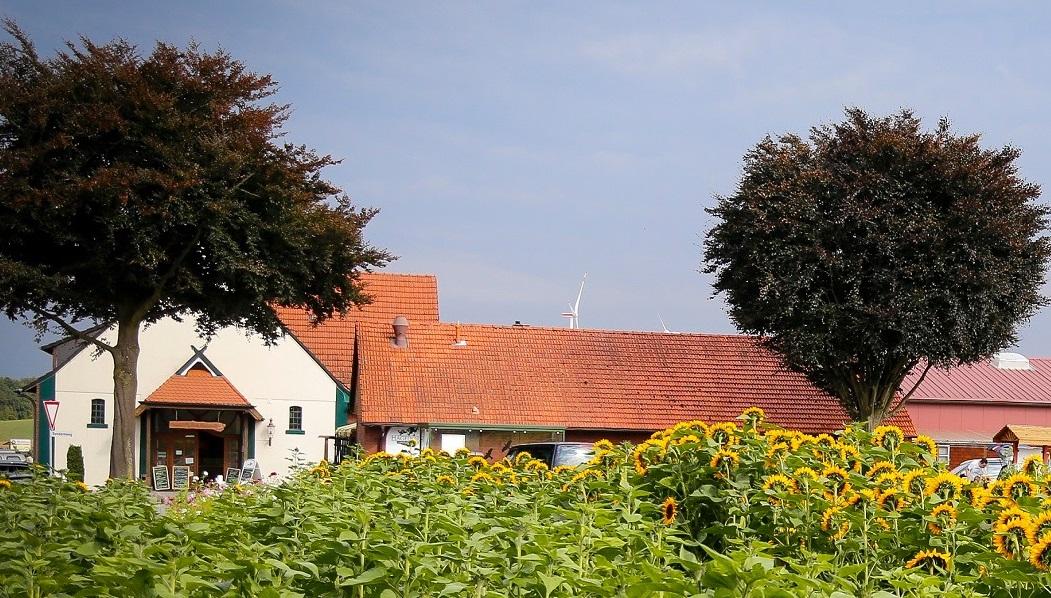 Das Foto zeigt den Hof Hagedorn in Haltern am See