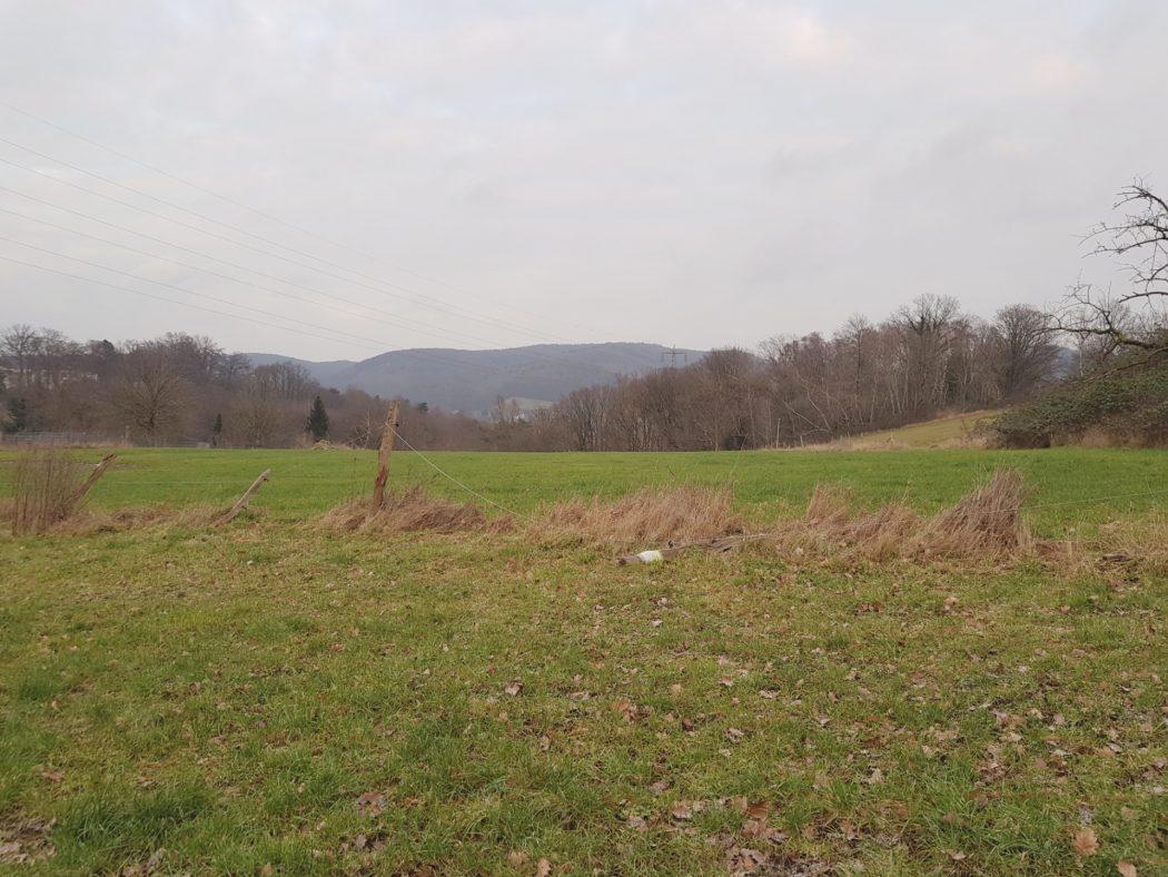 Das Foto zeigt eine grüne Wiese und Winterhimmel in Witten-Bommern
