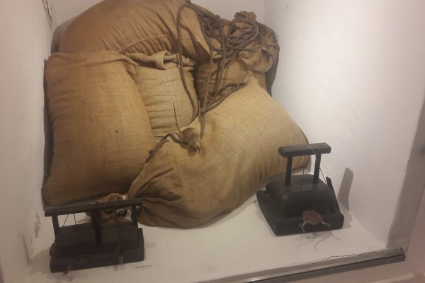 Das Foto zeigt ein Exponat im Emschertal-Museum im Schloss Strünkede in Herne