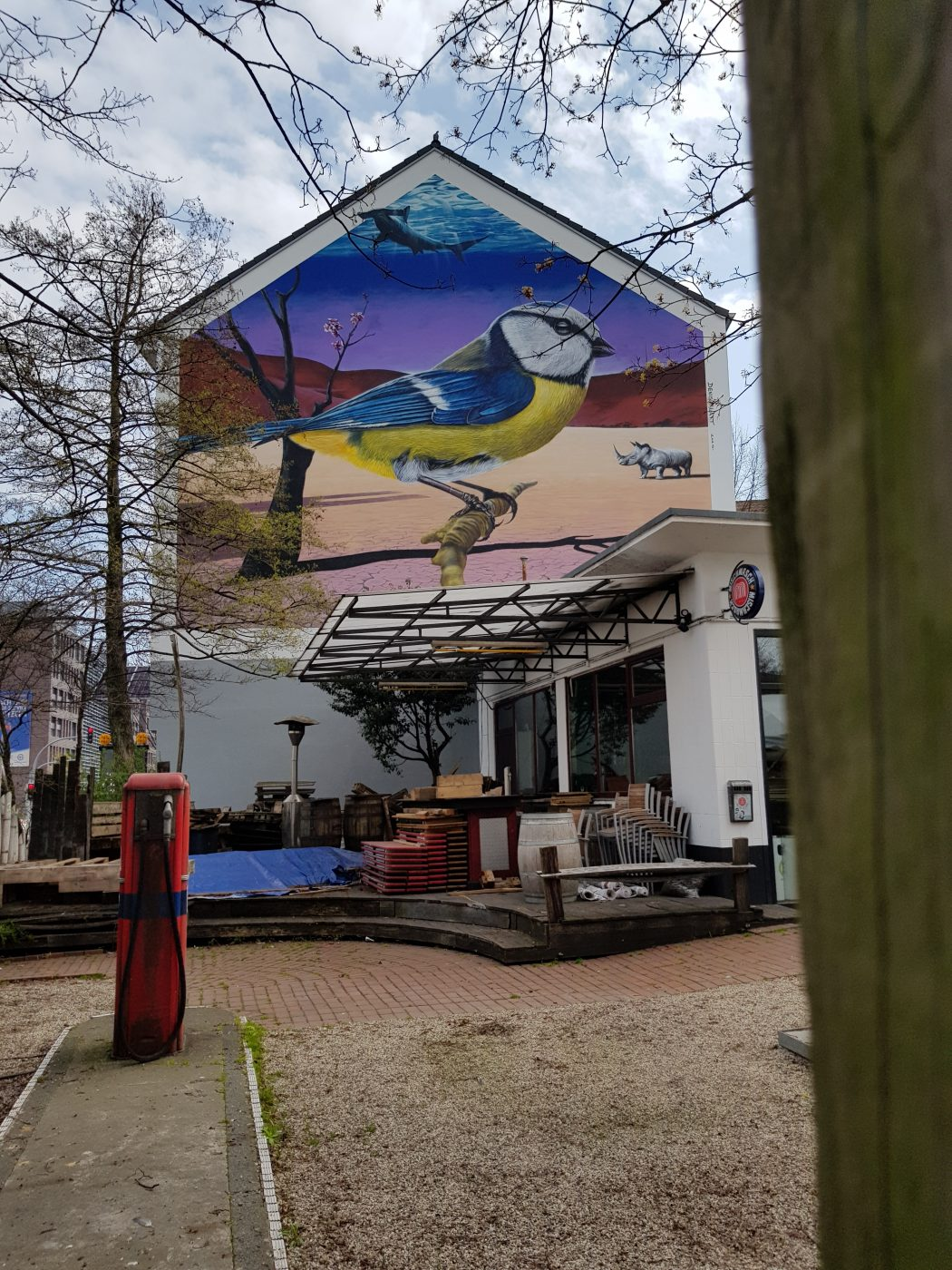 Das Foto zeigt ein Grafftiti von einer Blaumeise in Dortmund
