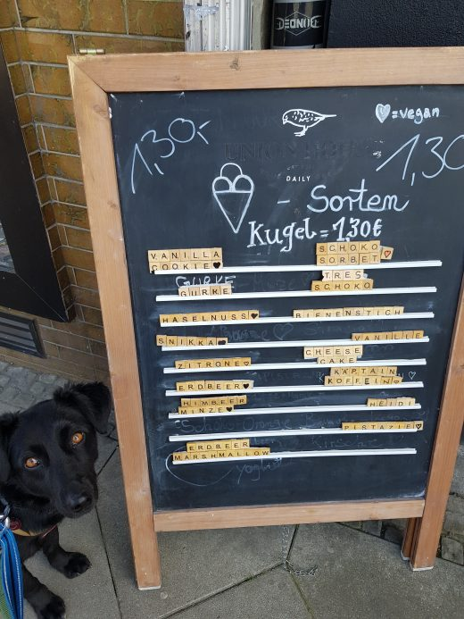 Das Foto zeigt die Eiskarte vom Kugelpudel in Dortmund