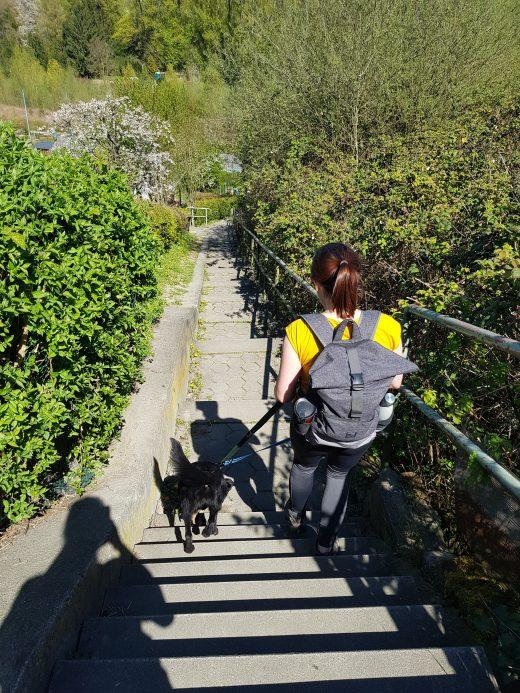 Das Foto zeigt eine Frau mit Hund auf dem Weg zum Emscherweg in Dortmund