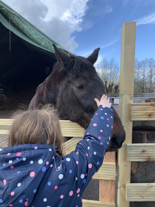 Das Foto zeigt Ninas Tochter zusammen mit einem Pferd auf dem Bauernhof Sagel in Bottrop-Kirchhellen