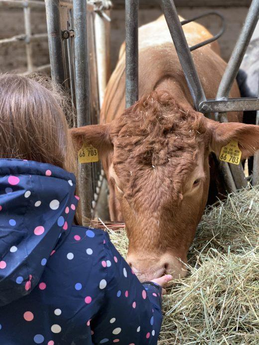 Das Foto zeigt Ninas Tochter zusammen mit einer Kuh auf dem Bauernhof Sagel in Bottrop-Kirchhellen