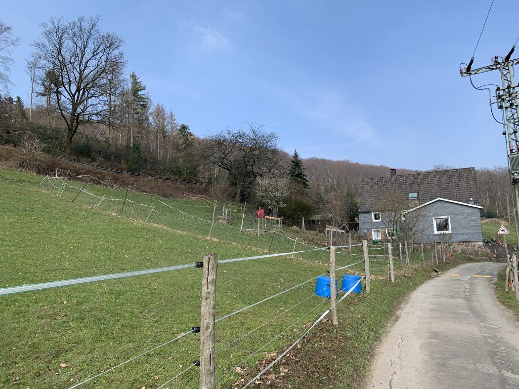Das Foto zeigt den Weg zum Begegnungshof in der Espe mitten in der Elfringhauser Schweiz