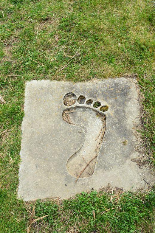 Das Foto zeigt Tippulus' Spuren auf dem Tippelsberg in Bochum