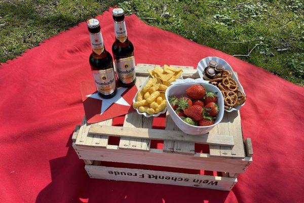 Das Foto zeigt Snacks und Getränke beim Picknick an der Hohensyburg in Dortmund
