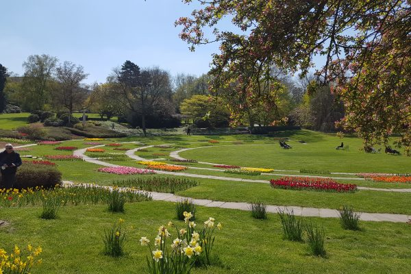 Das Foto zeigt den Grugapark in Essen, der sich bestens für ein Picknick im Ruhrgebiet eignet