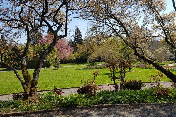 Das Foto zeigt den Grugapark in Essen