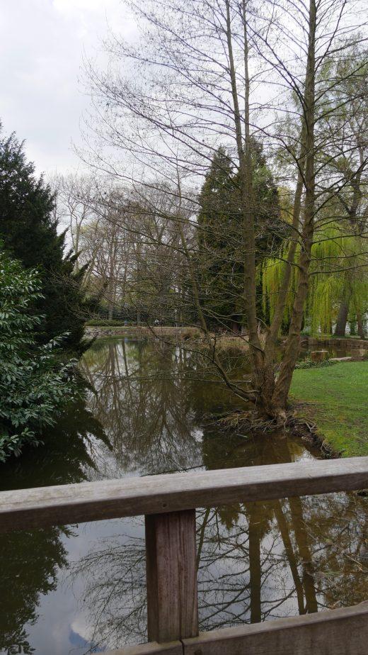 Das Foto zeigt den Stadtgarten Hagen