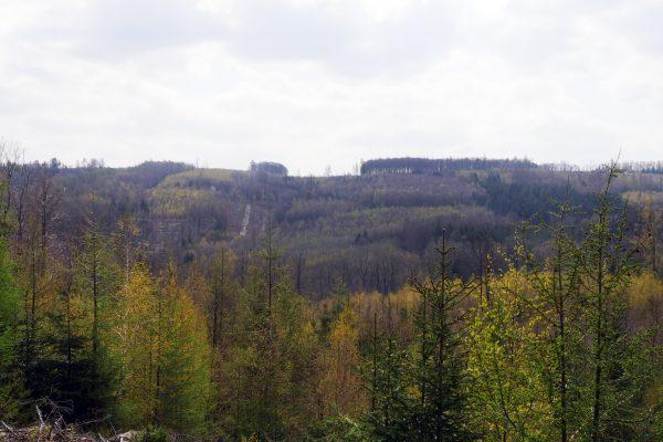 Das Foto zeigt eine Aussicht vom 3 Tüme WEG in Hagen aufs Sauerland