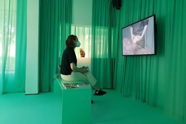 Das Bild zeigt Frauke vor einem Fernseher