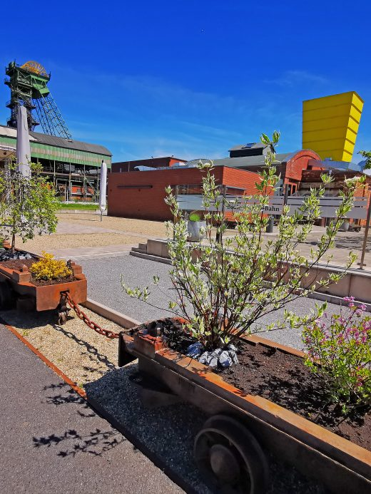 Das Foto zeigt alte Kohlenloren als Blumenkübel auf der Zeche Westfalen in Ahlen