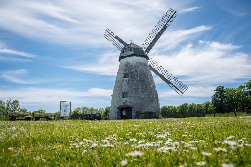 Das Foto zeigt eine Windmühle am Höxberg