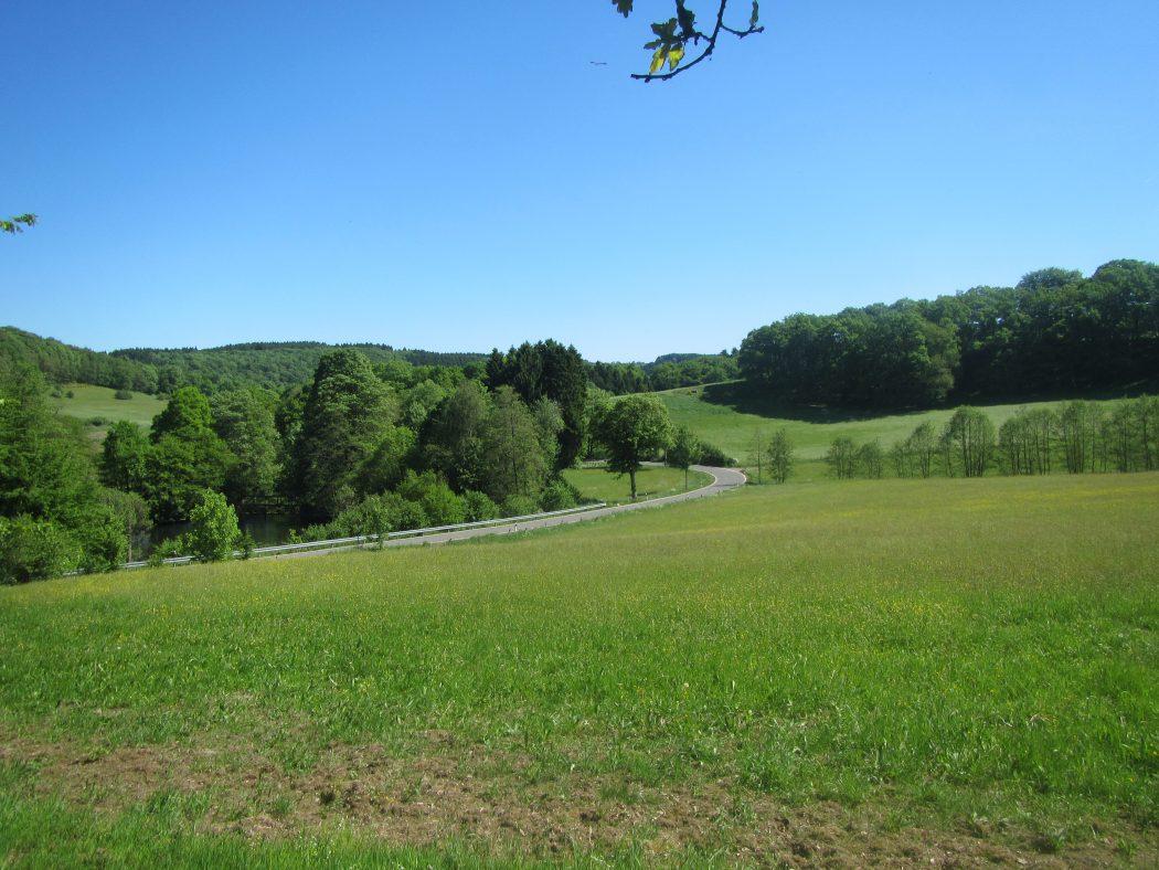 Das Foto zeigt grüne Wiesen Richtung Breckerfeld
