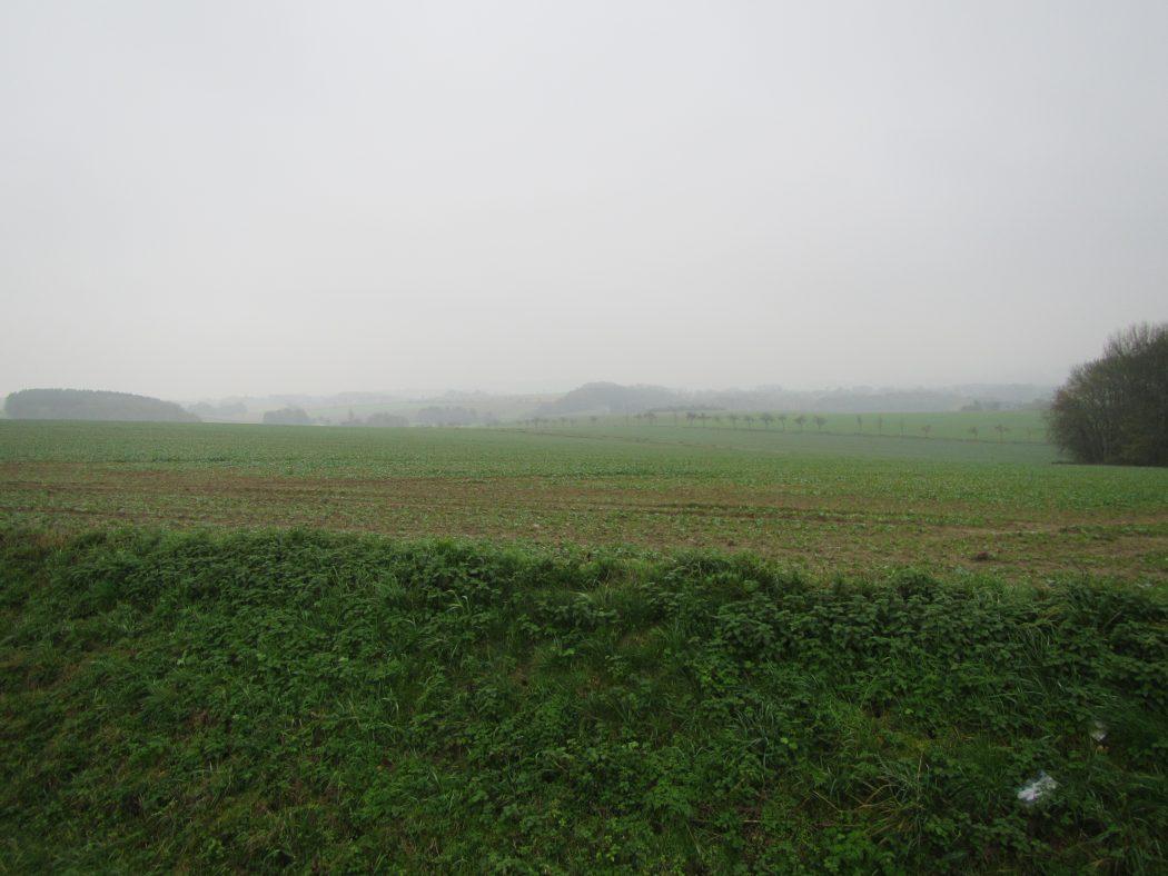 Das Foto zeigt die Soester Börde