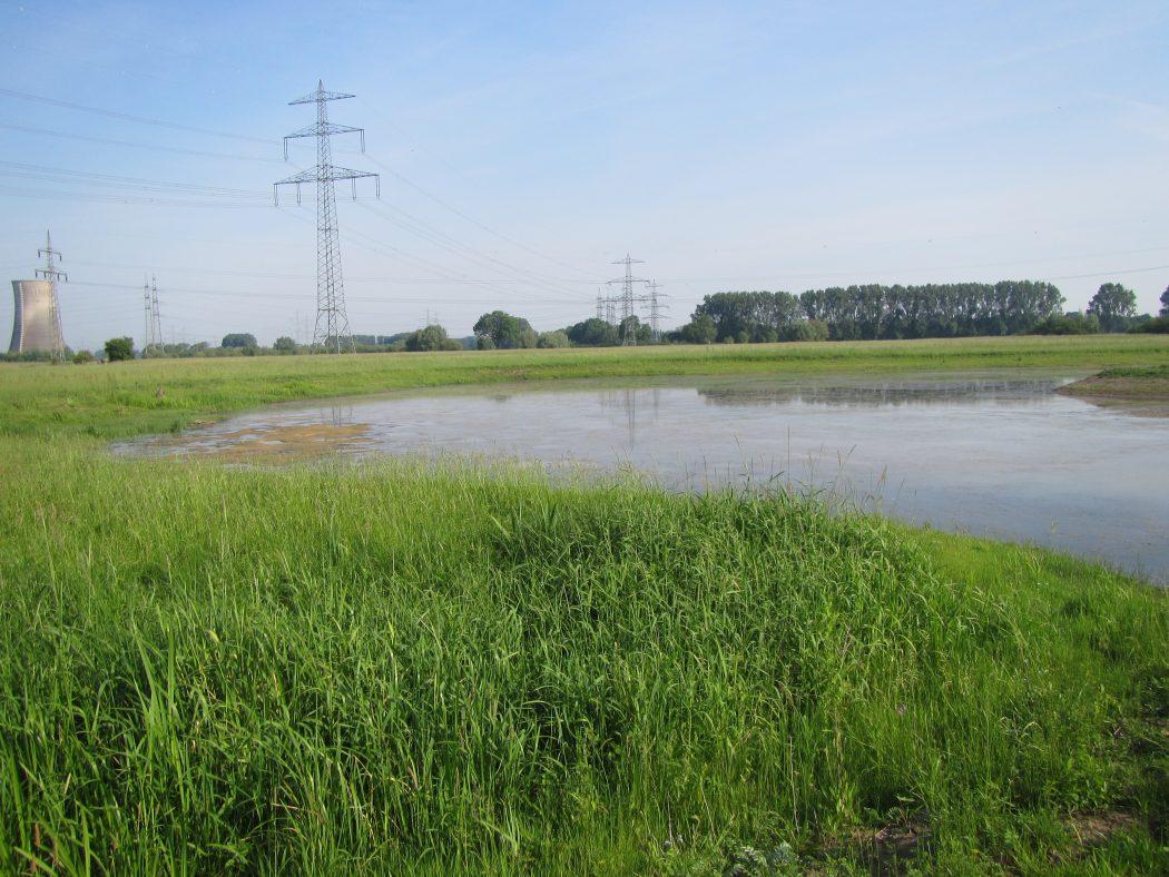 Das Foto zeigt den östlichsten Punkt des Ruhrgebiets an den Lippe-Auen
