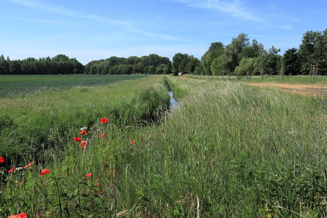 Das Foto zeigt zeigt die westliche Grenze des Ruhrgebiet ins Xanten und Sonsbeck