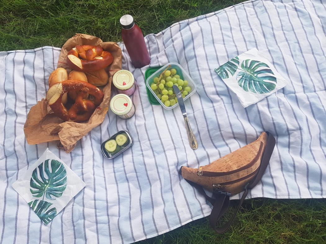 Das Foto zeigt ein Picknick am Haus Opherdicke in Holzwickede