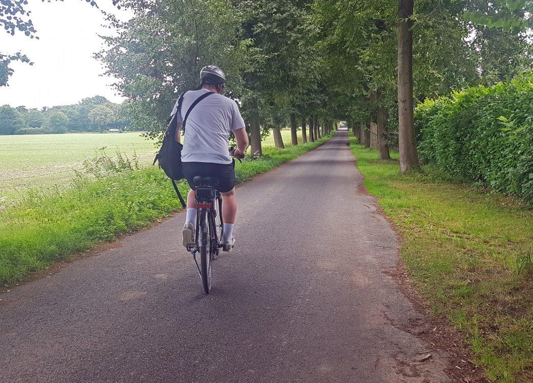 Das Foto zeigt einen Radfahrer