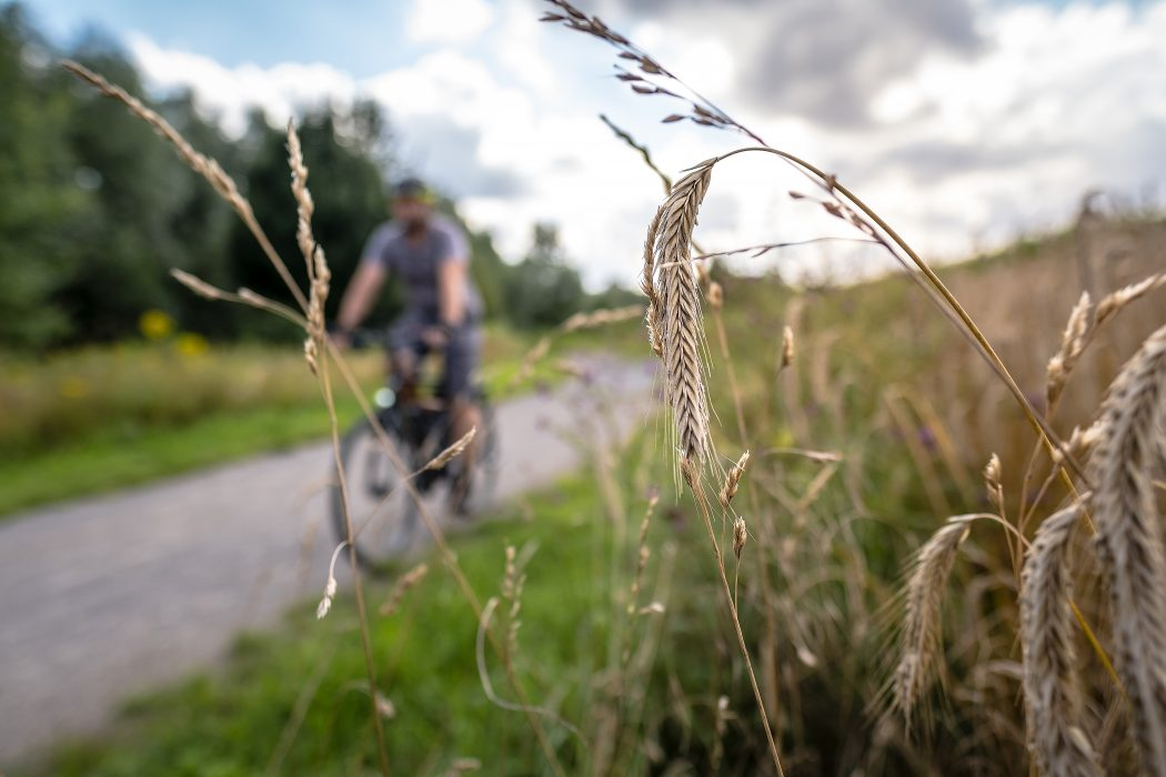 Das Foto zeigt Jochen bei seiner Radtour durch Dortmund an der Körne