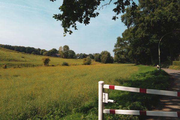 Das Foto zeigt Felder und Wiesen bei einer Radtour in Herne