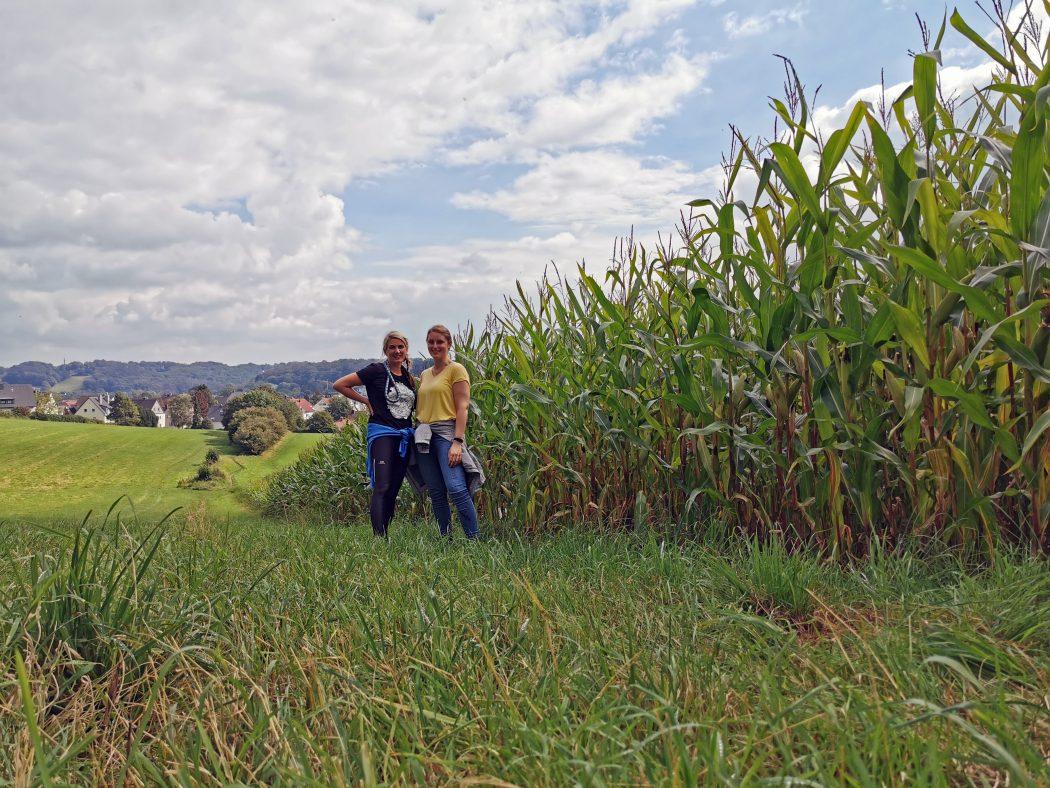 Das Foto zeigt Heike und Katalina bei ihrer Wanderung in einem Maisfeld in Sprockhövel